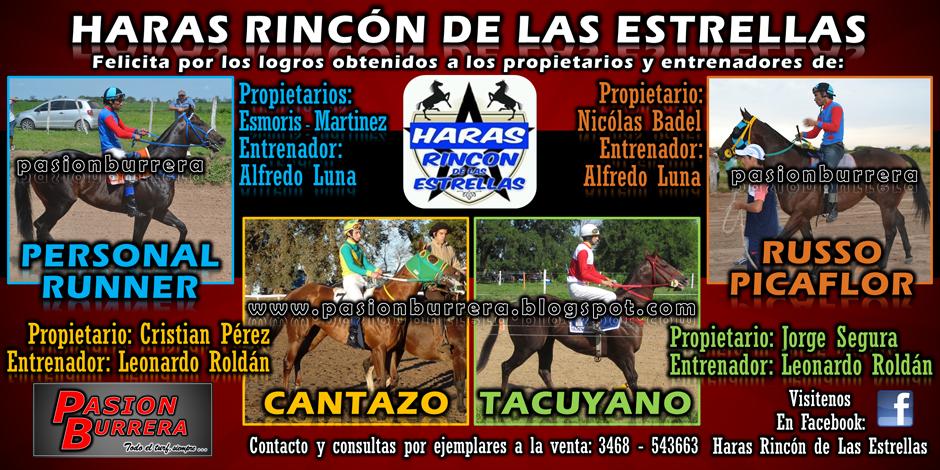 HARAS RINCON DE LAS ESTRELLAS