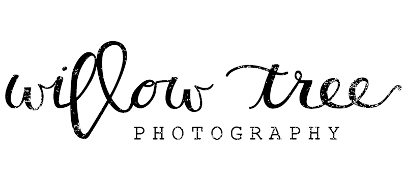 Willow Tree Photography