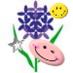 Hyacinth Diary