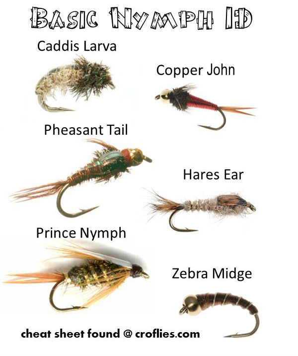 Fly Fishing Fishing Fly Identification