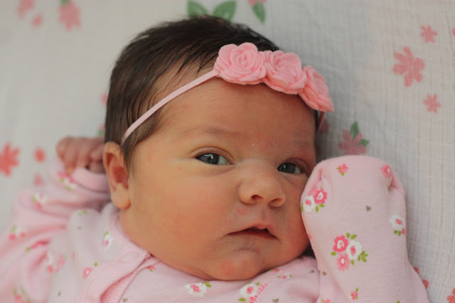 Introducing Baby Girl – August 31, 2013