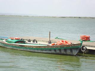 Boat Photo in El Mirador - Albufera - El Saler - Valencia
