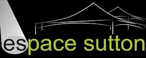 Espace Sutton coordonne les activités d'animation du Marché de Noël 2013