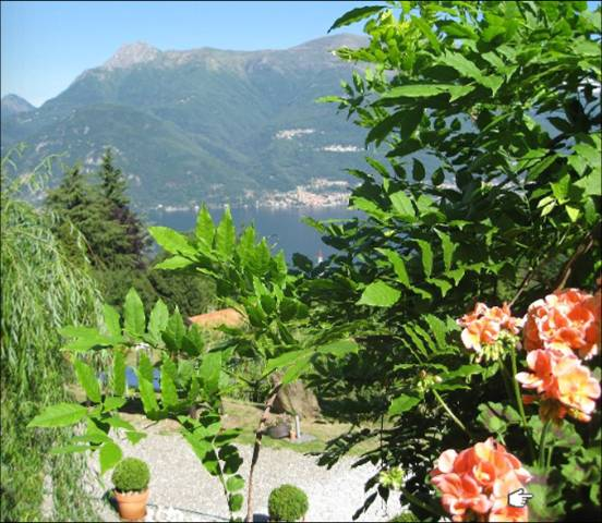 ....VIEW FROM THE GARDEN...