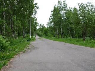 Комсомольский парк, аллеи