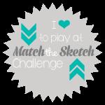 Match The Skatch