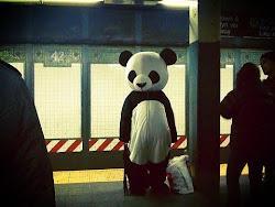 Panda en el metro ._.