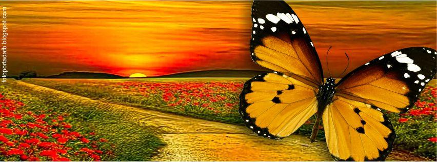 Foto portada para facebook de un amanecer en un campo de flores
