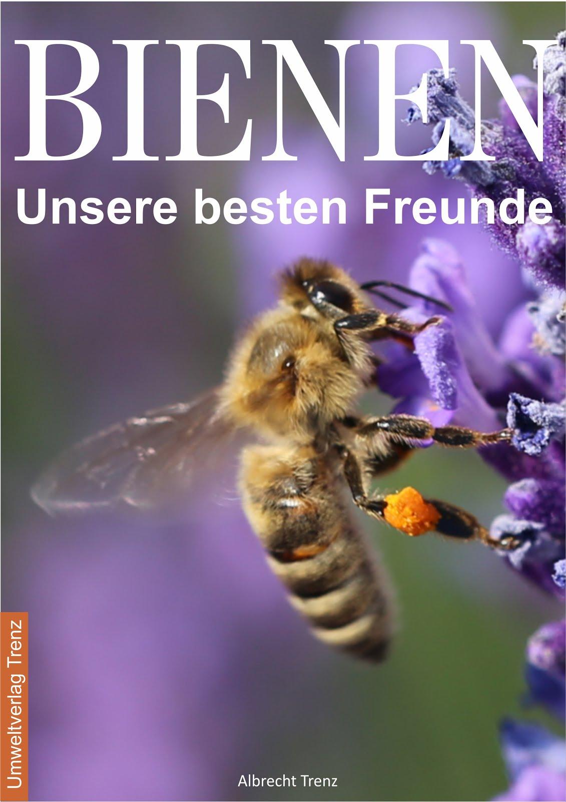 Entdecken Sie die faszinierende Welt der Bienen
