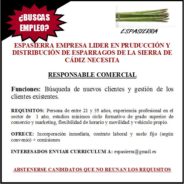 CURSO GESTOR DE PERSONAL PYMES. SOC: OFERTA DE EMPLEO DE ... - photo#4
