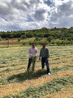 Yem Bitkisi desteğinden faydalanacak çiftçilerin dikkatine