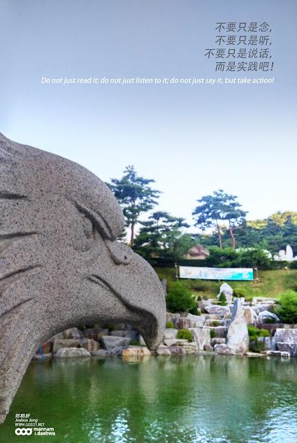 听, 说话, 实践, 老鹰, 松树, 石头, listen, say, action, eagle, pine tree, rocks
