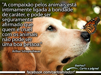 http://livrodemensagens3.blogspot.com.br/