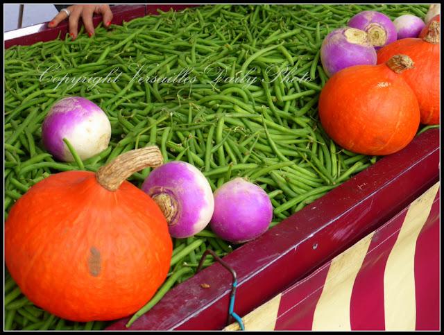 Pumpkins Versailles potirons market Porchefontaine