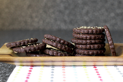 Homemade Cookie Recipe - Intensely Chocolate Sables Recipe via Smitten Kitchen - DIY Craft Blog Round Up