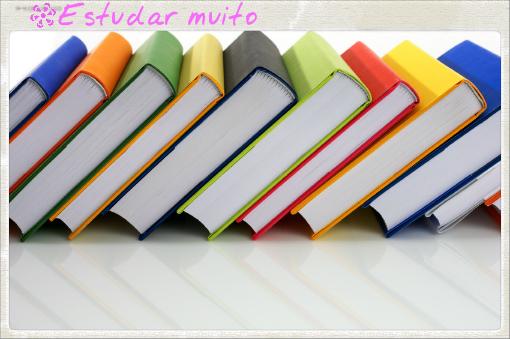 estudos e livros 2013