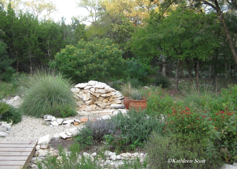Hill Country Mysteries: Hill Country Water Gardens