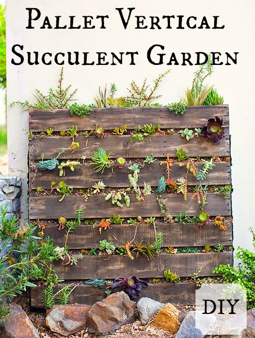 Kent heartstrings pallet vertical succulent garden diy for Pallet succulent garden
