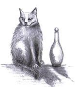 O gato à espreita