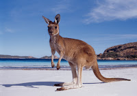 Australia-Tourism