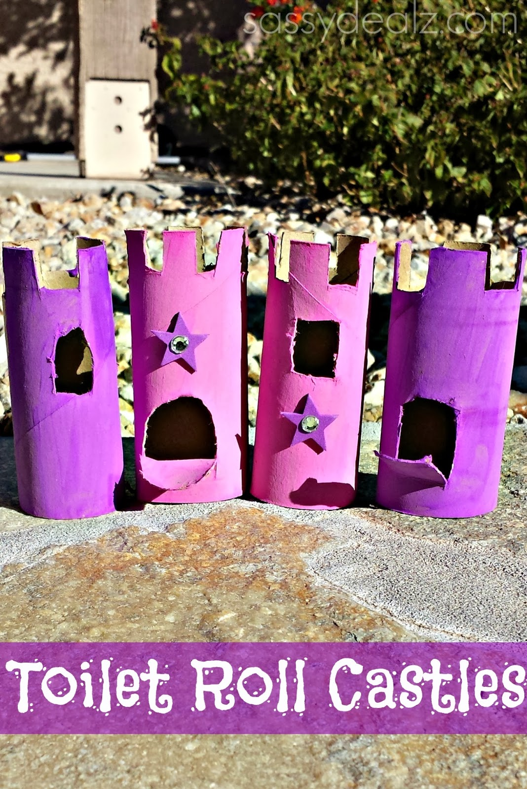 castles toilet paper roll craft