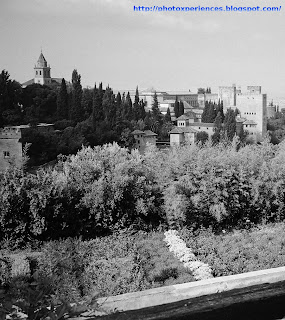 Vista general de la Alhambra desde el Generalife. General view of the Alhambra from Generalife. Alhambra. Granada. Spain.