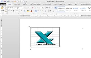 VBA: Pasar imagen de Excel a Word.