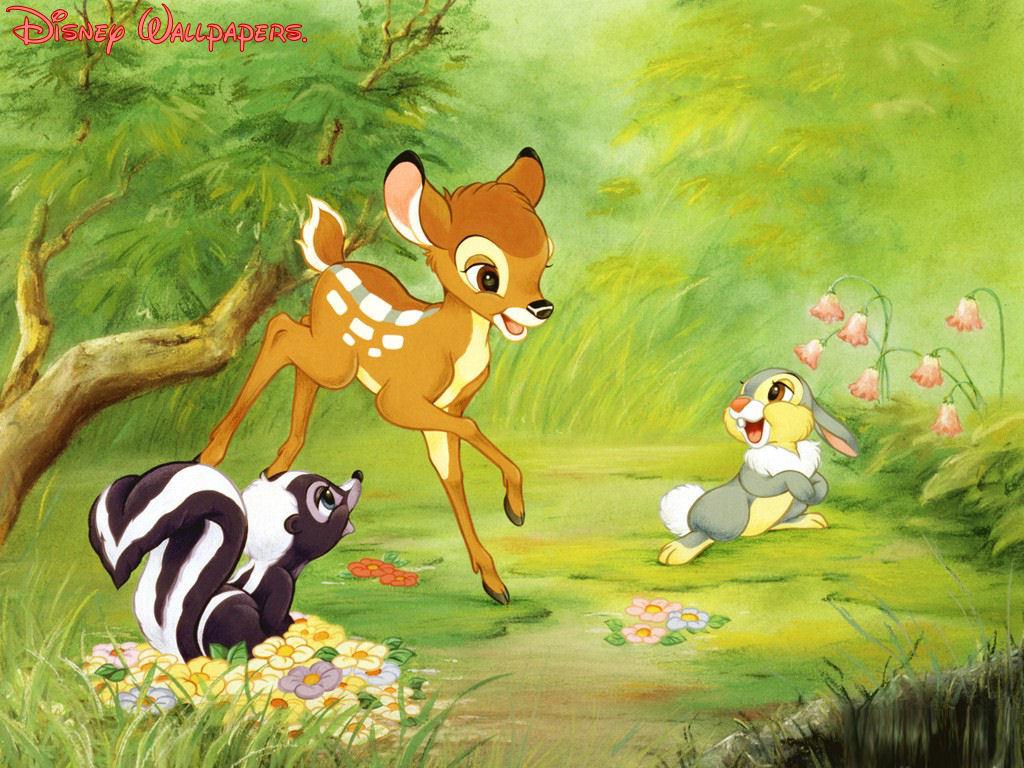 http://4.bp.blogspot.com/-NoP8OERGWRA/T8zEtvfiCsI/AAAAAAAAEfg/fqviXdw_lWU/s1600/Flower-wallpaper-18.jpg