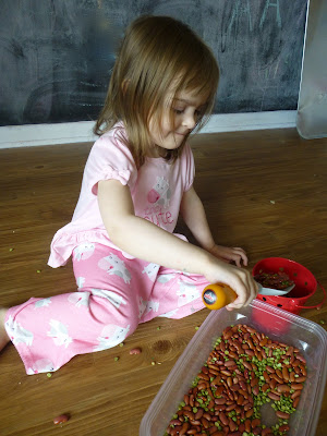 Exploring beans-- gardening themed learning activities