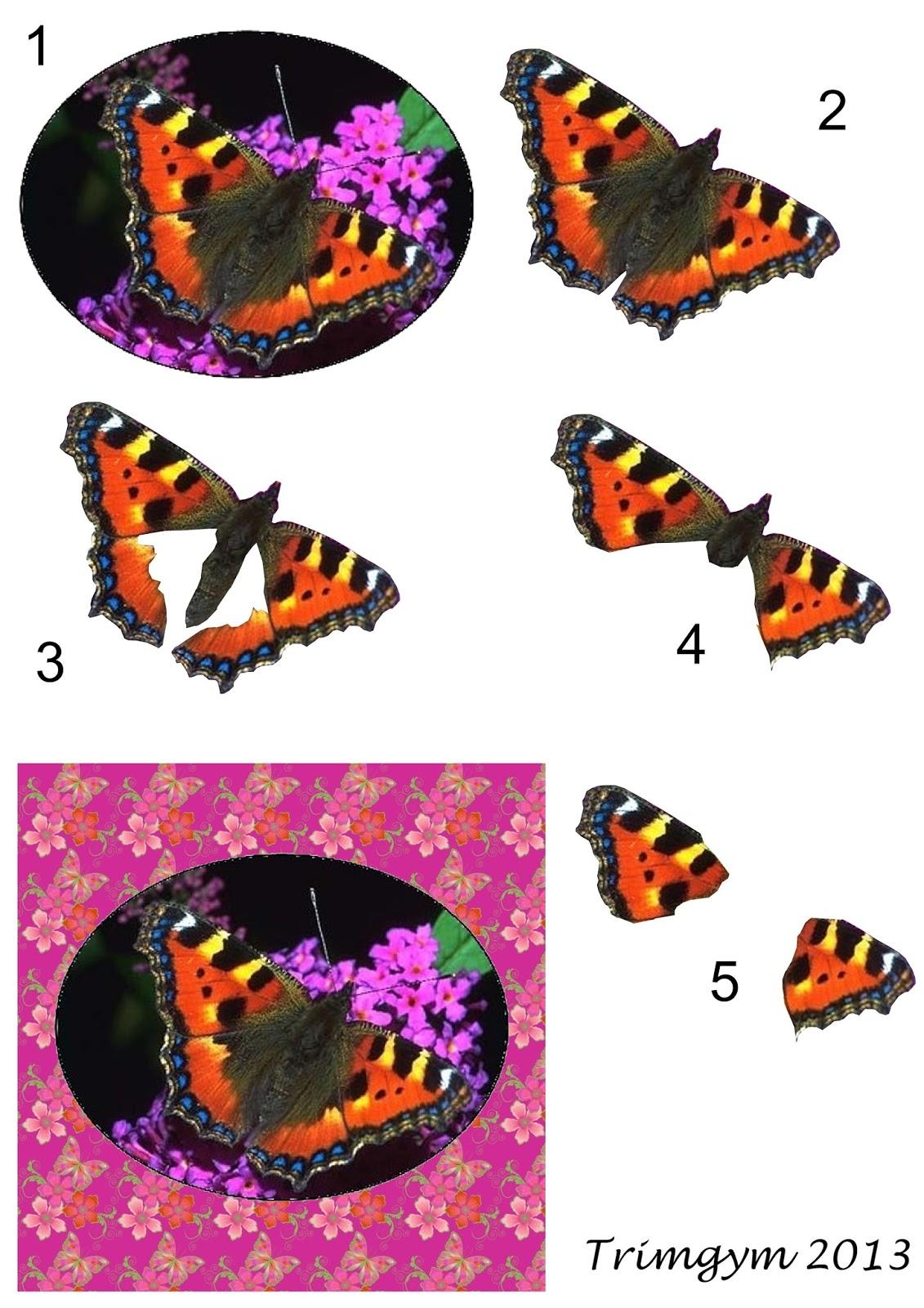 http://4.bp.blogspot.com/-NoklBT059Eo/UxILcLsAzfI/AAAAAAAASHY/bajMp7HBc8w/s1600/Butterfly+Decoupage+Topper+4++by+Trimgym.jpg