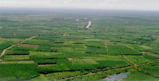 Produção de perímetros irrigados da Codevasf cresce 11% e alcança R$ 1,4 bilhão em 2012