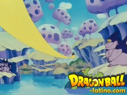 Dragon Ball capitulo 29