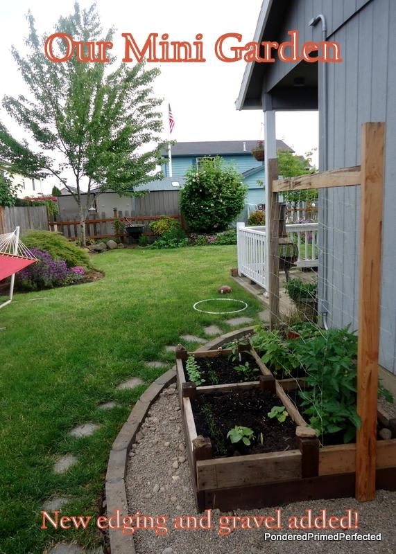 Our Mini Garden Improvements