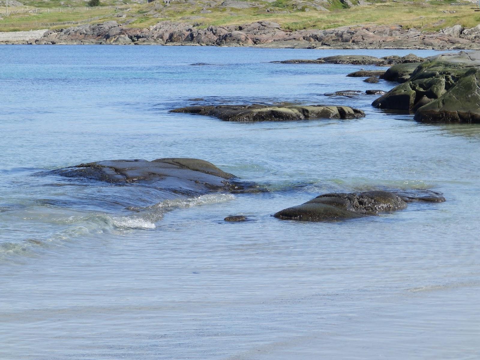 how to get to fogo island newfoundland