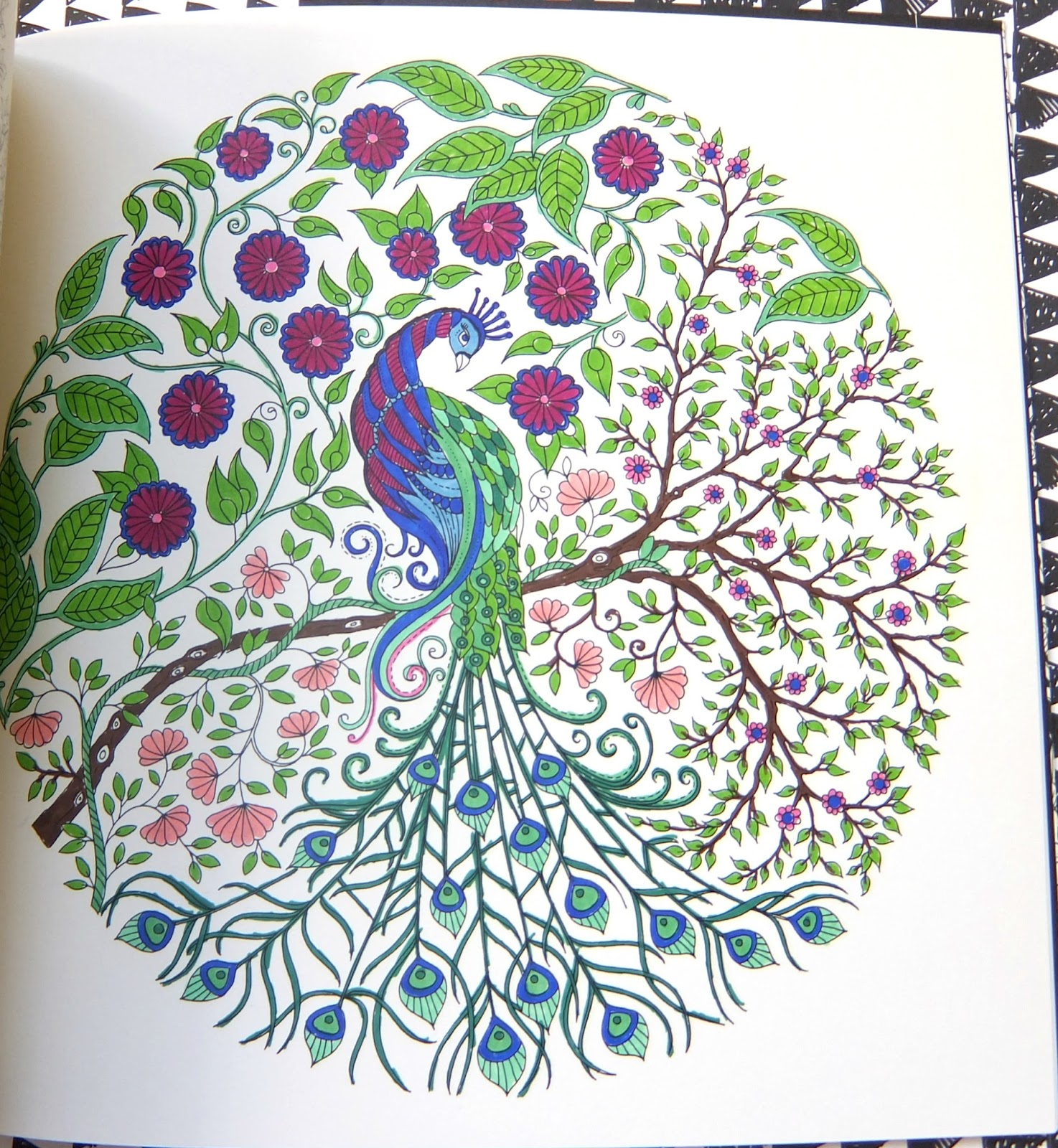 Adult Colouring Books Review Johanna Basfords Secret Garden