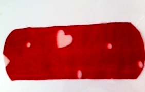 Valentine home made fleece liner