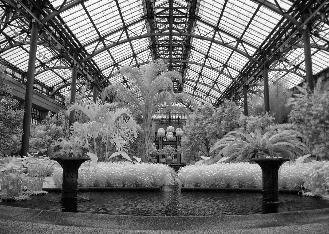 East Conservatory Captured With A Canon G 10 Converted To Infrared.