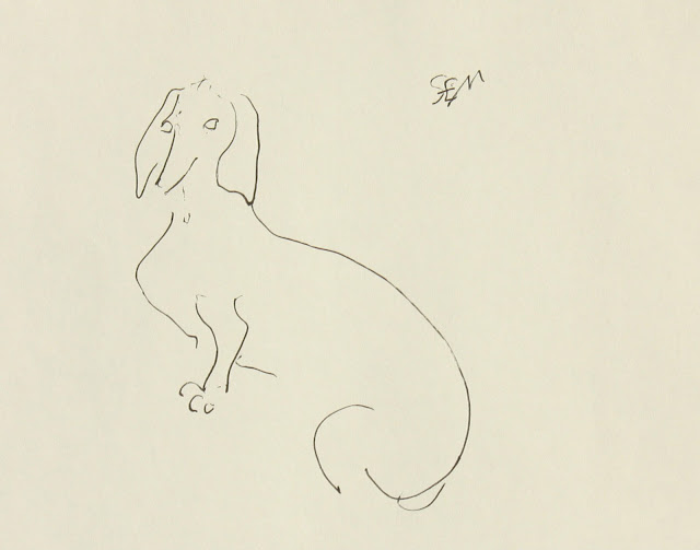 Dachshund, Portrait, dog, Sarah Myers, S. Myers, Ink, Paper, sketch, drawing, line-drawing, study