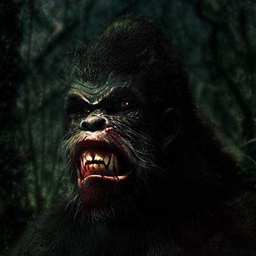 the history of bigfoot We asked matt moneymaker and the bigfoot field researchers organization to count down what they believe to be the strongest pieces of evidence for the existence of bigfoot.