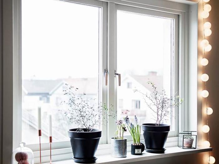 ideas de decoracion con Plantas y tiestos