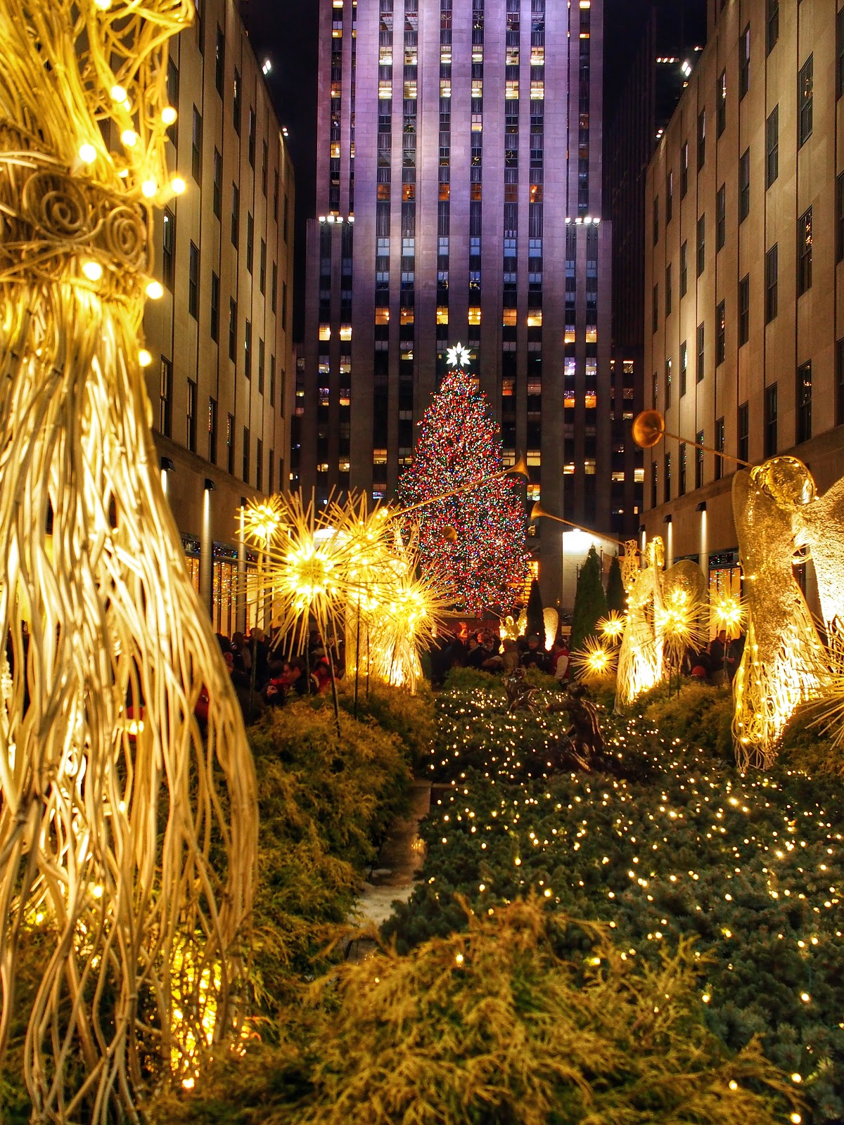 Rock Center Tree without the Twinkle (2013) #rockcentertreewithoutthetwinkle #holidays #holidaysinNYC #rockefellercenter #NYC ©2014 Nancy Lundebjerg