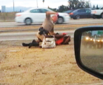 Cop beating up motorist
