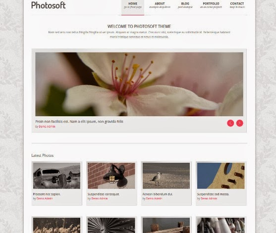 Photosoft