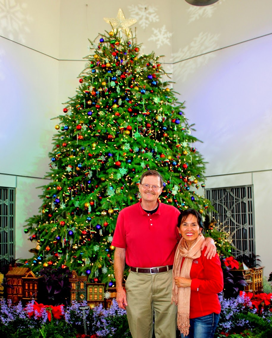 Christmas tree at the US Botanic Garden - West Gallery