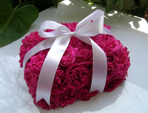 الف مبروووك Gift-rose-box-pink