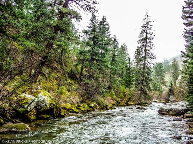 Fishing south boulder creek for Boulder creek fishing