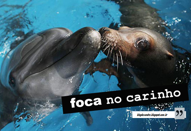 focacarinho.png (660×454)