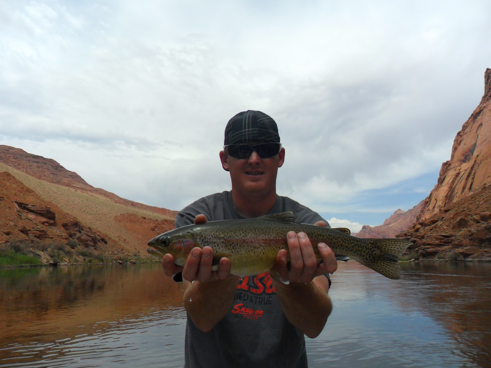 Lees ferry fishing report lees ferry az august 2012 for Lees ferry fishing report