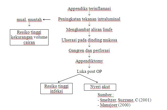 Pathway / WOC IMA / Apendiksitis