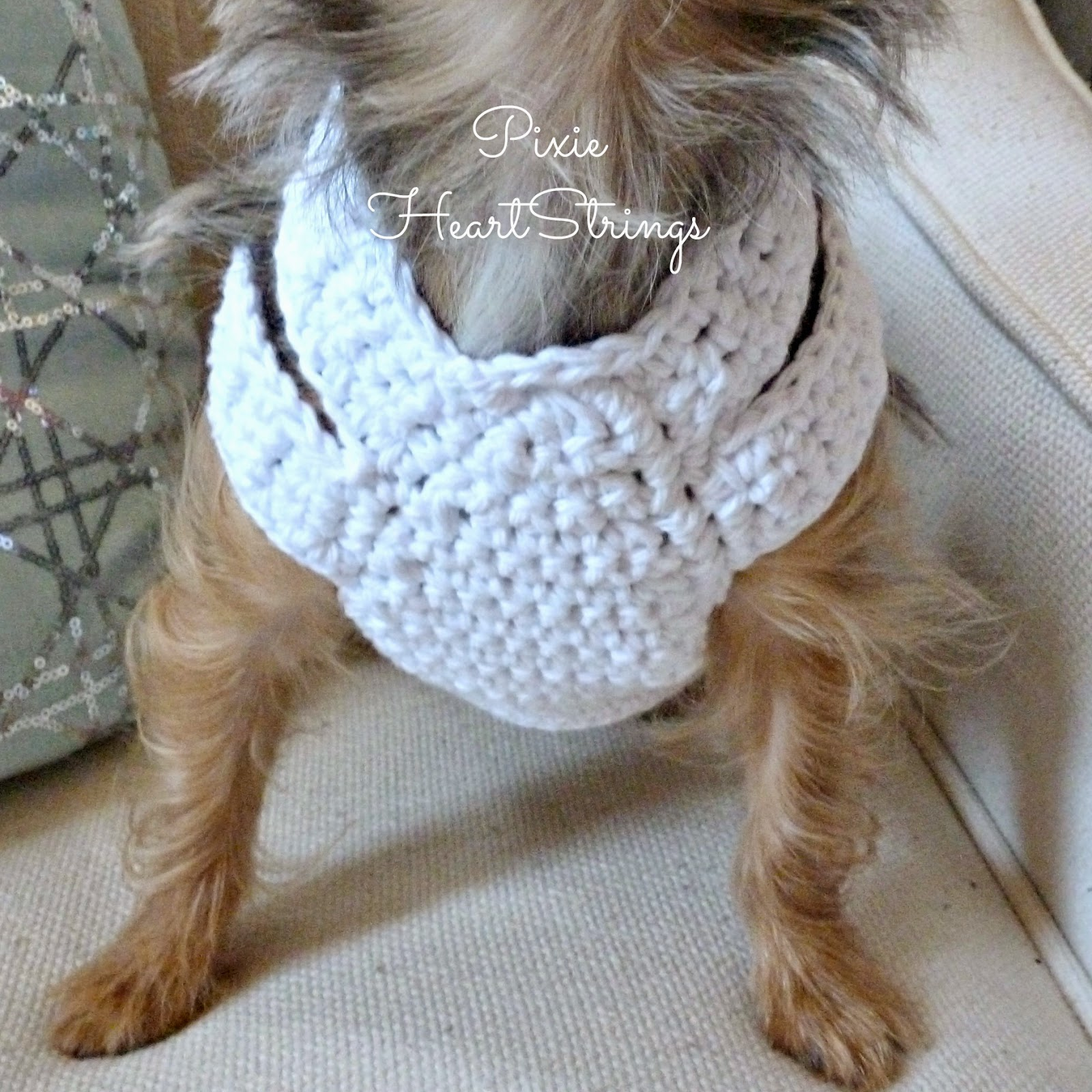 Blog%2B16 pixie heartstrings a crocheted dog harness for your tiny dog ~ free